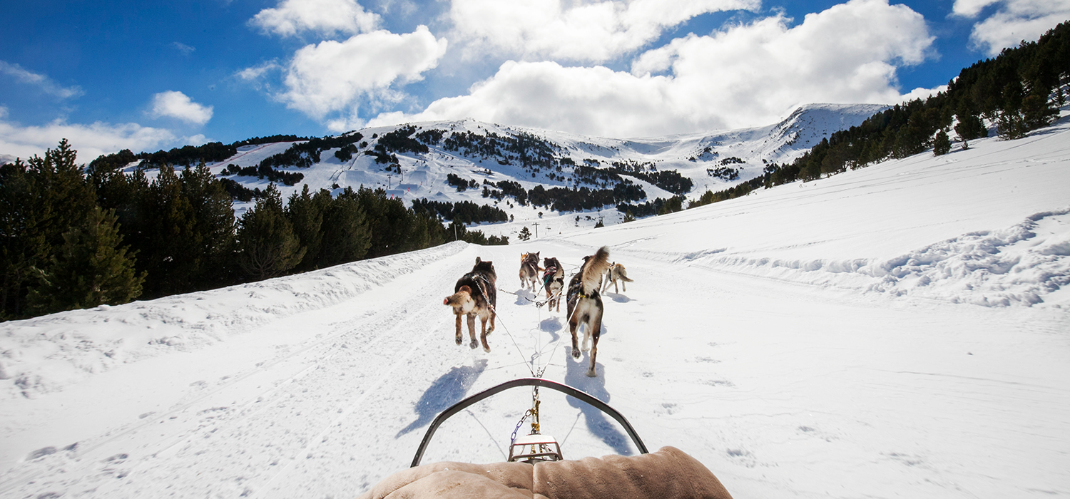 dog sledding in el tarter, andorra