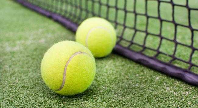 Types of Tennis courts - Grass court
