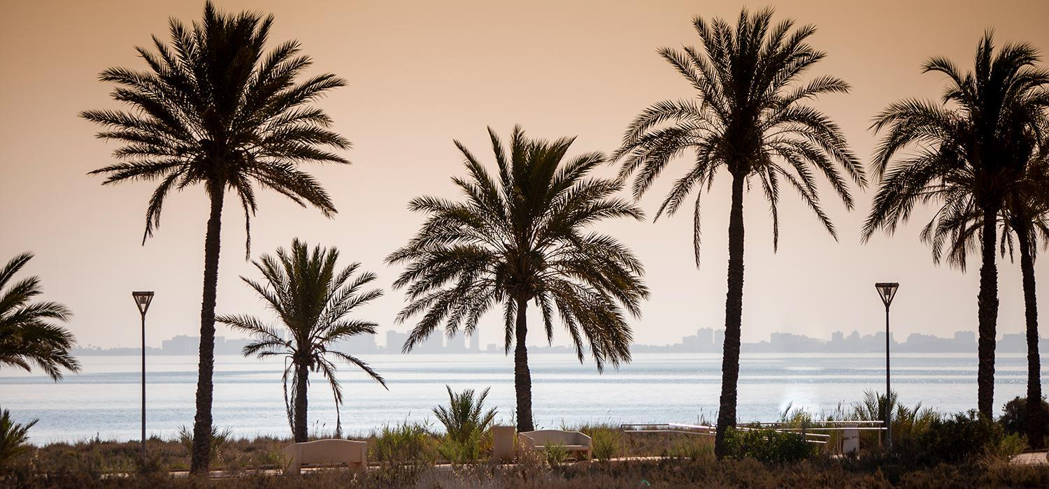 Views of Mar Menor
