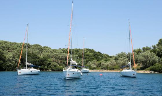 Yachts moored in a bay